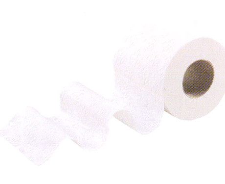 Papier Toilettes Rouleaux Standards